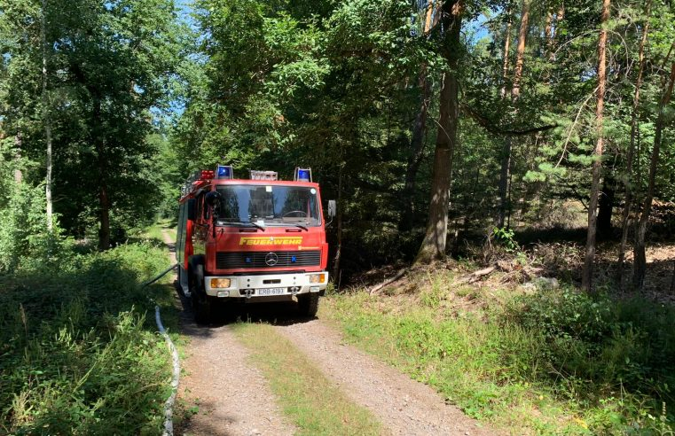 F Wald 1 – Waldbrand klein