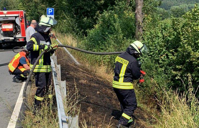 """F Wald 1 """"brennt Seitenstreifen"""""""